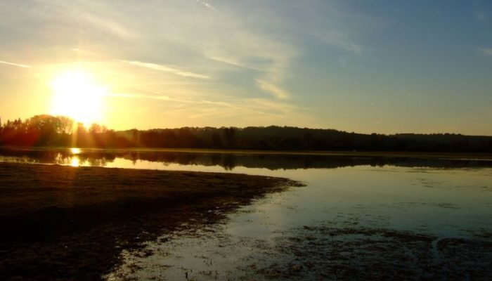 By OxOx https://commons.wikimedia.org/wiki/File:Port_Meadow_sunset.jpg
